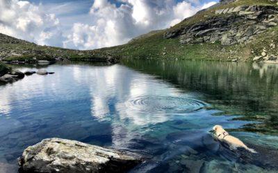 La serenità in uno specchio d'acqua