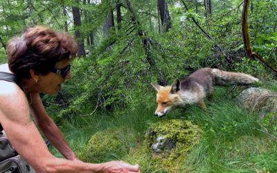 La donna e la volpe