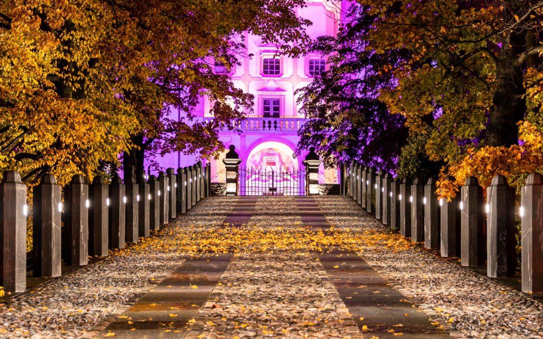 Château en rose
