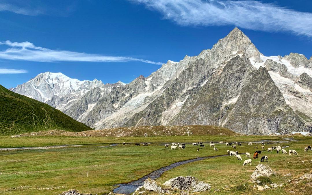 Pascoli della Val Ferret